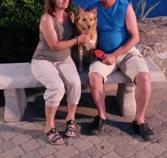 Adopciones Protectora El Cobijo